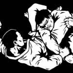 bjj-brazilian-jiu-jitsu-jujutsu